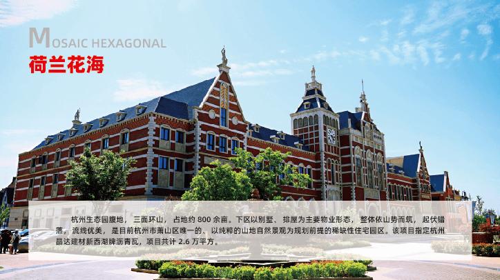 杭州-荷兰花海