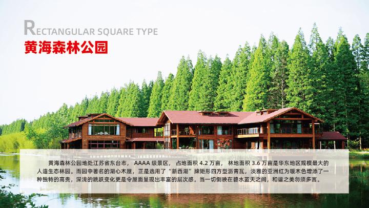 江苏-黄海森林公园